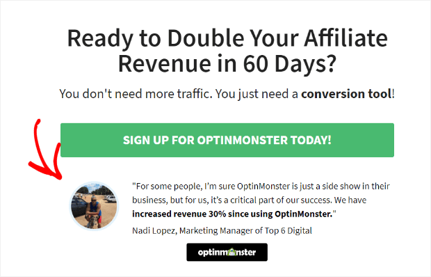 Review with OptinMonster campaign
