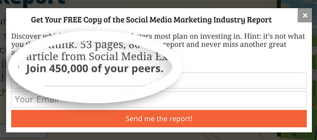 Social Media Examiner Social Proof