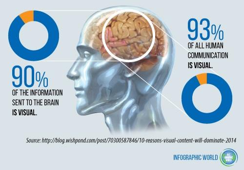 visual-brain