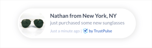 social proof notification from trustpulse