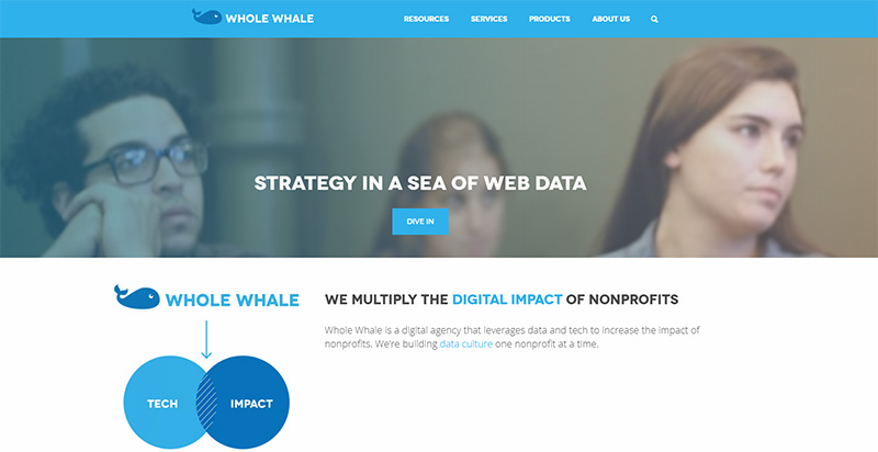 Whole Whale Uses OptinMonster