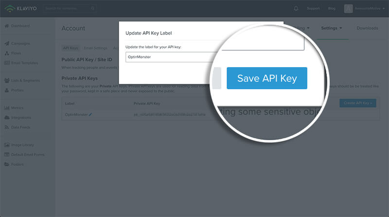 Click Save API Key