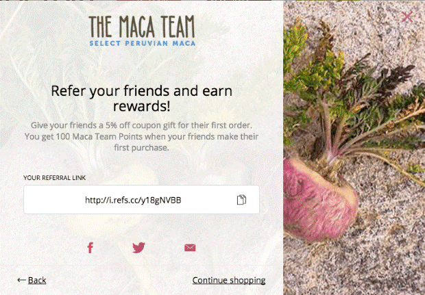 sales promotion examples - maca team