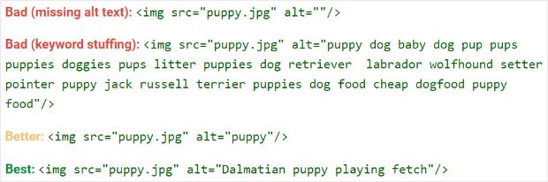 google_image_alt_text_best_practices