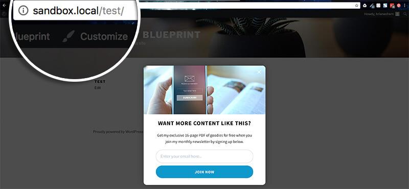 URL slug is test
