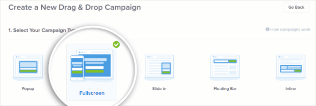 fullscreen campaign type is perfect for creating a squeeze page