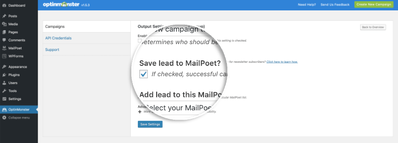 Save Leads to Mailpoet