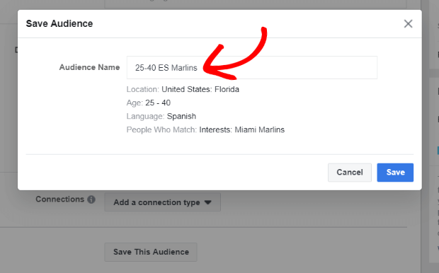 name your custom audience in facebook ads