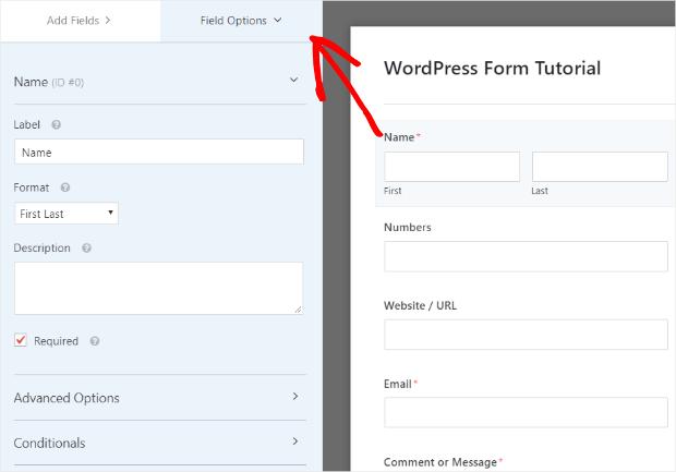form field options