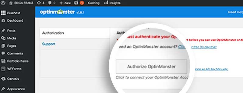 Authorize OptinMonster on your WordPress site