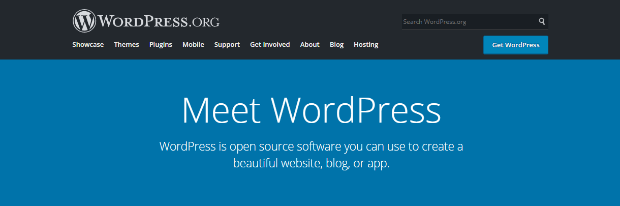 WordPress homepage