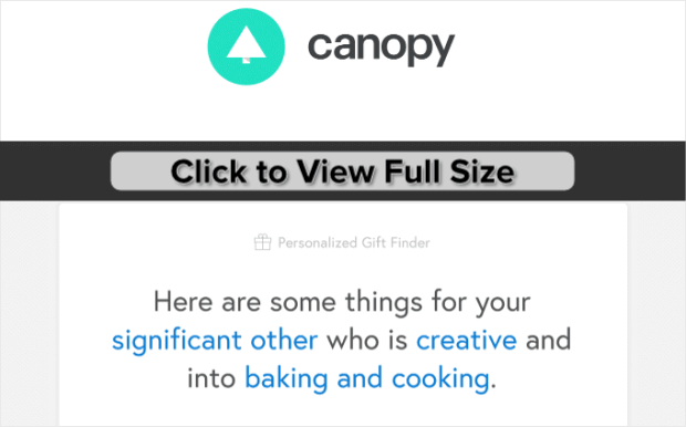 Canopy-Website-Behavior-Email