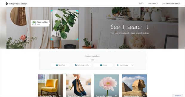 bing's visual search website