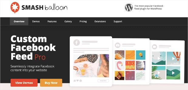 Smash Balloons Homepage