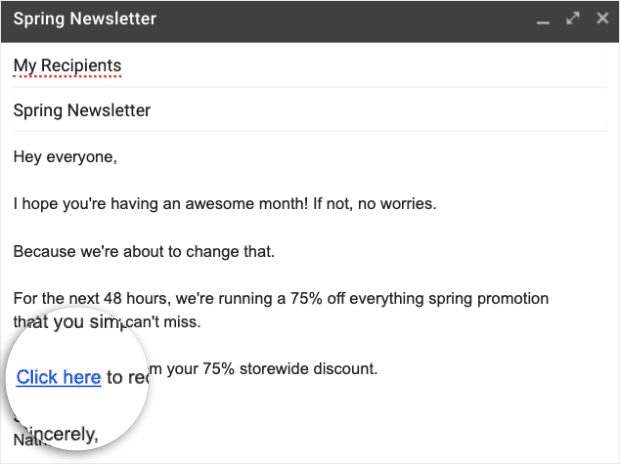 Newsletter Campaign Example min