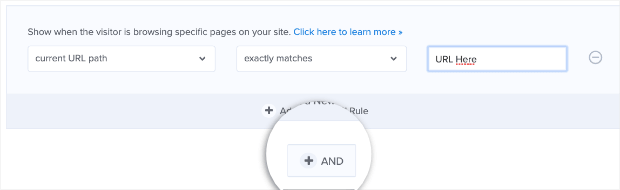 Add another URL to the display rules