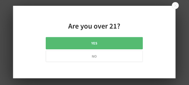 Are you over 21 example campaign