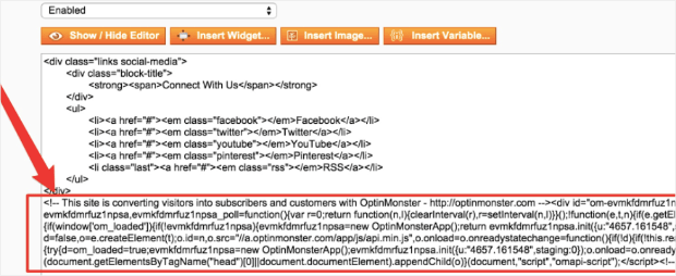 Embed OptinMonster into Magento