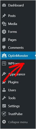 OptinMonster in WordPress-min