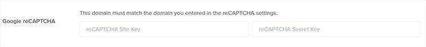 OptinMonster reCAPTCHA champs pour les codes