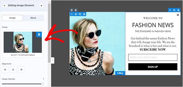 Edit fashion template image
