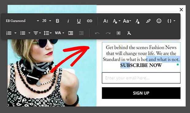 Fashion inline text editor