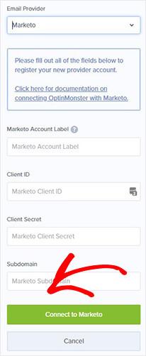 Marketo account details_