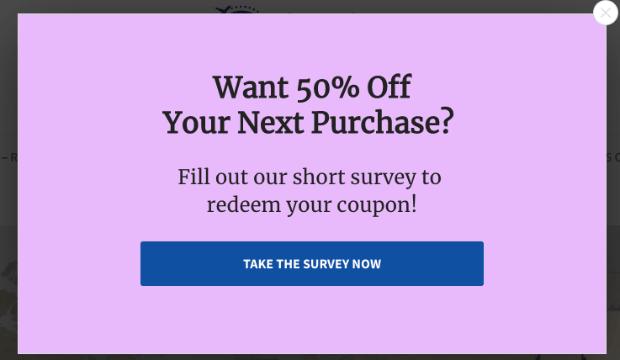 Survey Popup Demo