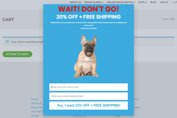 Exit popup free shipping