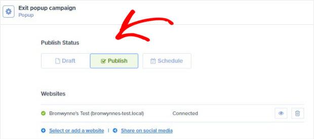 publish status