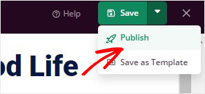 Click Publish in SeedProd_