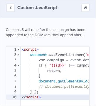 add custom javascript to optinmonster campaign
