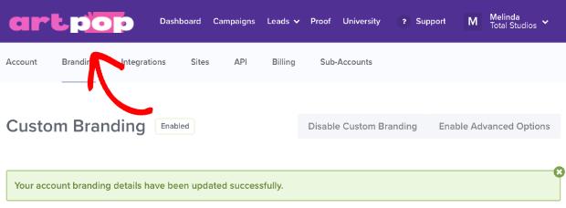 Customized OptinMonster dashboard
