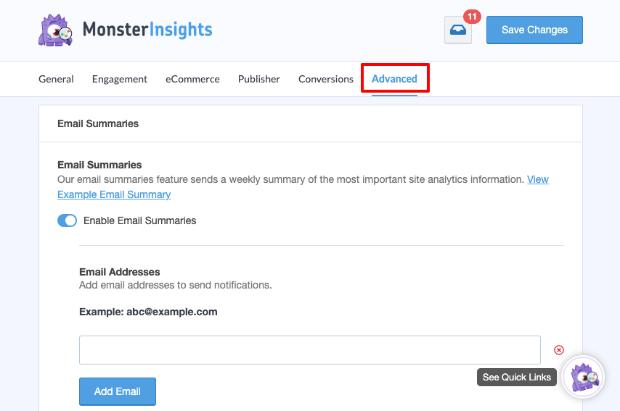 MonsterInsights advanced options