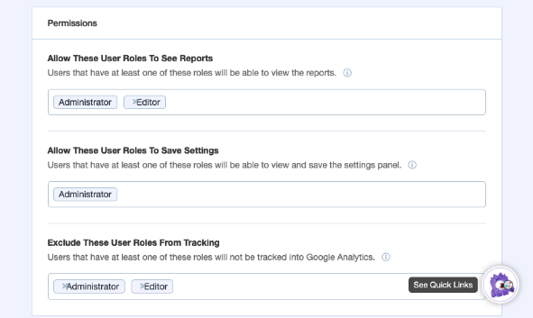 MonsterInsights permissions for users