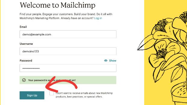 Sign up for mailchimp