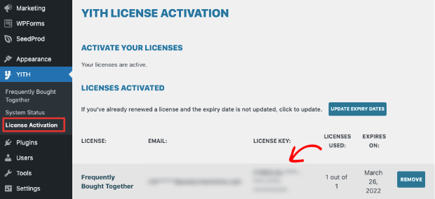 activate yith license