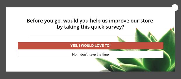exit survey campaign example