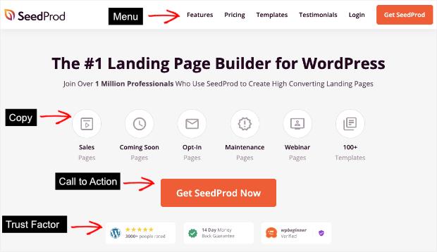 seedprod homepage example
