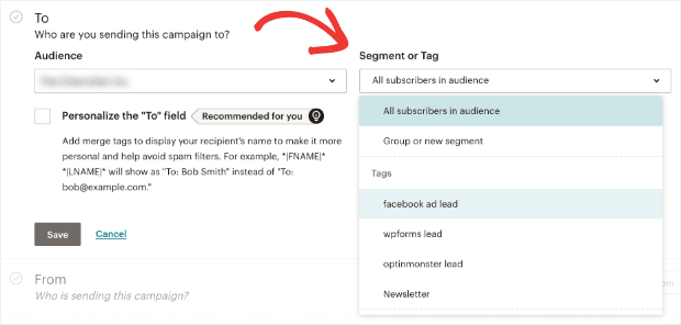 tags example in mailchimp