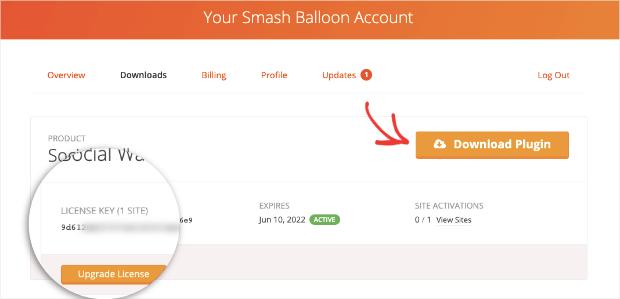 smash balloon download plugin